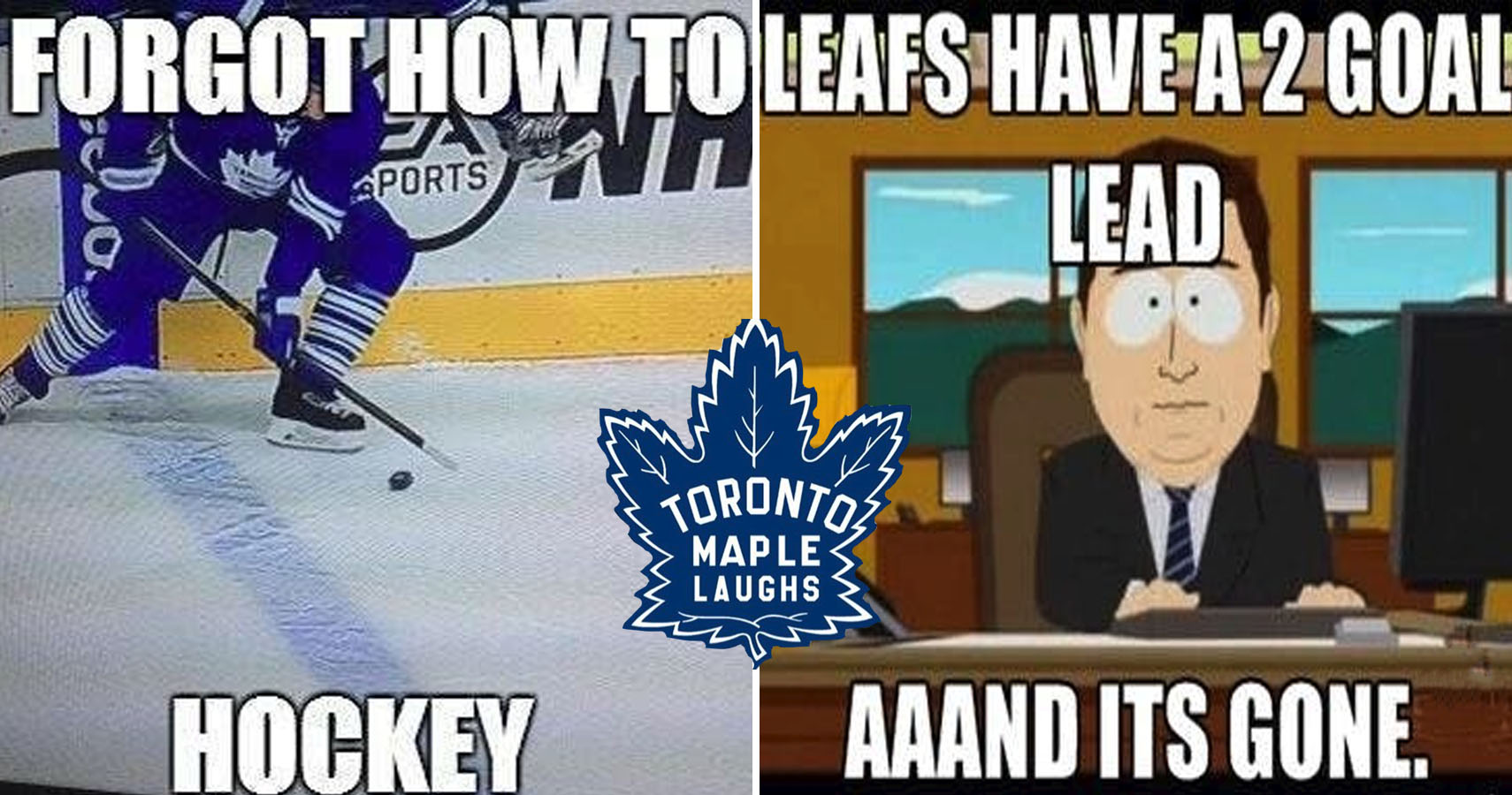 Hilarious Memes About The Maple Leafs' Failures